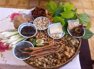 Wholesale spices & herbs: Indonesian Herbs and Spices