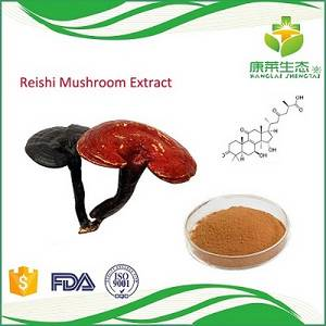 Wholesale recovery tower china: High Quality Reishi Mushroom Extract Powder