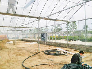 Wholesale span: Multi-span Greenhouse Engineering From Chinese Company