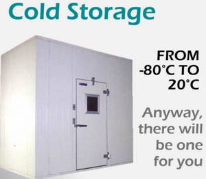 Wholesale fresh fruits: Fresh Fruit Farm Cold Storage Room