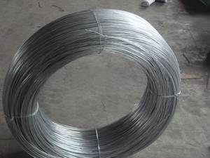 Wholesale steel nails: Steel Wire & Nails