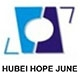 Hubei Hopejune Forging & Mechanical Co., Ltd