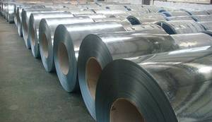 Wholesale Other Stainless Steel: Steel Stainless Coil
