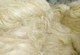 Sell NATURAL SISAL FIBER AND SISAL YARN FOR SALE