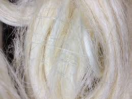 Wholesale Other Fiber: Sisal Fiber UG Grade