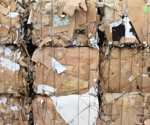Wholesale waste: Occ Waste Paper