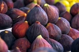 Wholesale Other Fruit: Fresh Fig Fruits for Sale