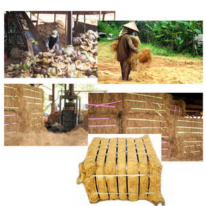 Wholesale brown coconut coir: Coconut Fiber