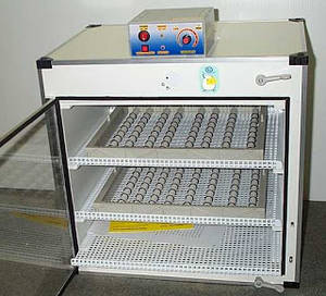 Wholesale egg incubator: Eggs Incubator,Parrot Egg,Chicken Eggs,Duck Eggs,Geese Eggs,Quail Eggs Incubators