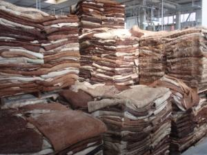 Wholesale salted hides: Best Grade Wet Salted Donkey Hides / Wet Salted Donkey / Cow Skin / Dry Salted Cow