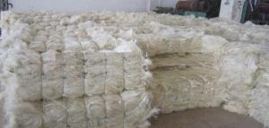 Wholesale sisal rope suppliers: Sisal Fiber
