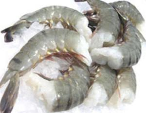 Wholesale Shrimp: TIGER SHRIMP,FROZEN VANNAMEI CPDTO/Black Tiger PD/ BLACK TIGER SHRIMP PD & PDTO