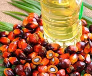 Wholesale organic acid: Palm Oil