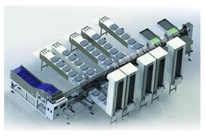Wholesale packing machine: Egg Grading and Packing Machine