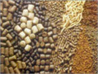 Wholesale Other Feed Additives: Cattle Feed Additives