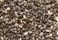 Oil Seeds: Sell Best Quality Chia Seeds
