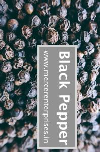 Wholesale Spices & Herbs: Best Quality Black Pepper