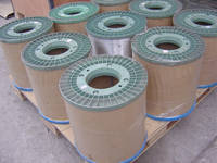 Galvanized Wire/Hot Dipped/Electric