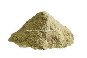 Wholesale dried ginger: Spray Dried Ginger Powder