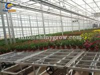 Greenhouse Rolling Benches for Efficient Greenhouse Operation