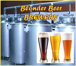 Sell Microbrewery, minibrewery with technology and recipes