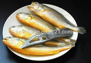 Wholesale iqf: Frozen IQF Yellow Croaker