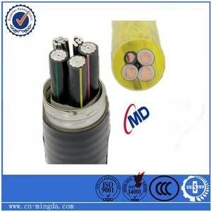 Wholesale Electrical Wires: YJHLV8,XLPE Insulated, Aluminum Alloy Conductor, Chain Armored with Aluminum