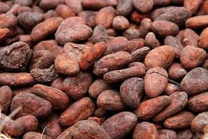 Wholesale beverage: Cocoa Beans