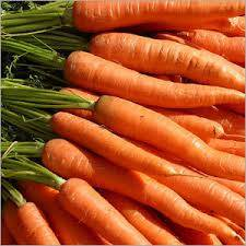 Sell fresh carrots , tomatoes ,  onions