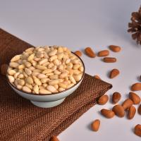 Wholesale Pine Nuts in Shell