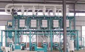 Wholesale flour sifter: Milling Wheat Machines