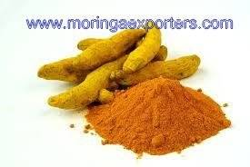 Wholesale curcuma longa root: Oleoresin Turmeric 95%  Curcumin Powder