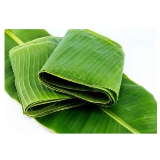 Sell fresh and frozen banana leaf