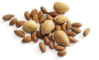 Sell Californian Almond Shelled and Inshell