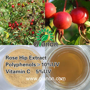 Wholesale anthocyanin 5%: Rose Hip Extract Vitamin C