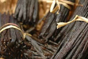 Wholesale Chocolate Ingredients: Vanilla Beans Wholesale
