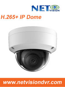 Wholesale dome camera: NV412F(S)--2MP H.265 Dome WDR IP Camera