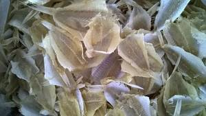 Wholesale dried seafood: Dried Croaker Fillet