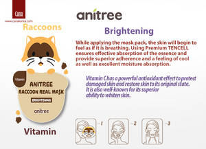 Wholesale mask pack: CANA Anitree Brightening Mask Pack Vitamin