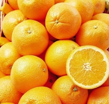 Sell Sell Fresh Naval Oranges From South Africa