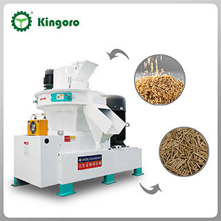 Sell Biomass Rice Bran Pellet Production Line to Make Biofuel Pellets