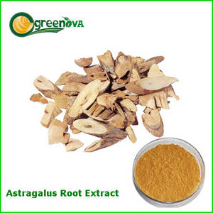 Wholesale astragalus extract powder: Astragalus Root Extract