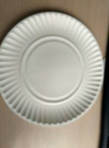 Wholesale disposable plates: Paper Plate Disposable Plate