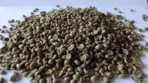 Wholesale sblc: Coffee and Cocoa Beans