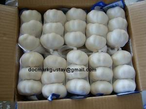Wholesale dried garlic: Fresh and Dried Garlic