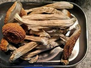 Wholesale Dried Mushrooms: LY-2183240,Medical Weed for Recreational Purpose,Moonrocks, Edibles, Vape Cartridges and Shrooms