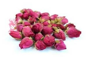 Wholesale Fresh Cut Flowers: Rose