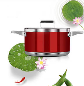 Wholesale sauce pot: Ceramic Coating Dutch Oven & Casserole with Temperd Glass Lid
