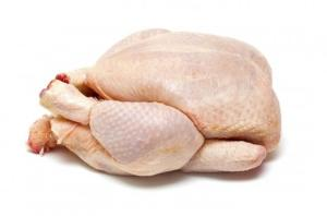 Wholesale griller: Frozen Chicken Griller