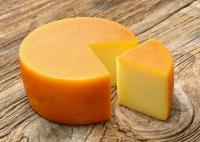 Gouda Cheese Best Price Dairy Product